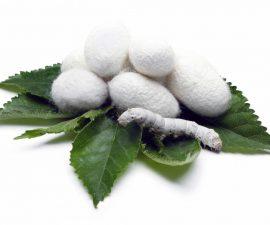fabrication de la soie impact environnement