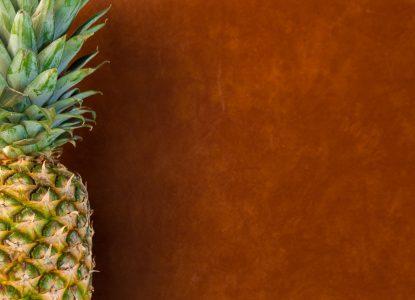 presentation cuir d'ananas